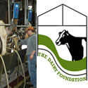 Iowa Dairy Foundation