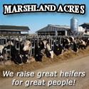 Marshland Acres
